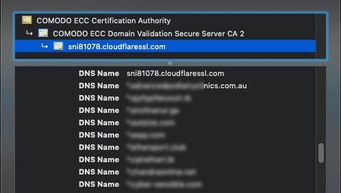CloudFlare Free Shared SSL Common Names